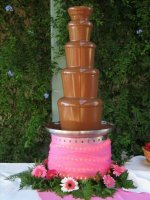 Chocolate Fountains Delite