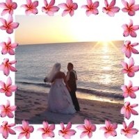 Dream Weddings in Paradise