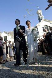 Pure Wedding